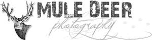 Mule Deer Photography Logo